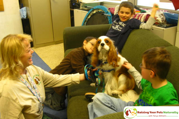Training a dog to be a therapy support dog