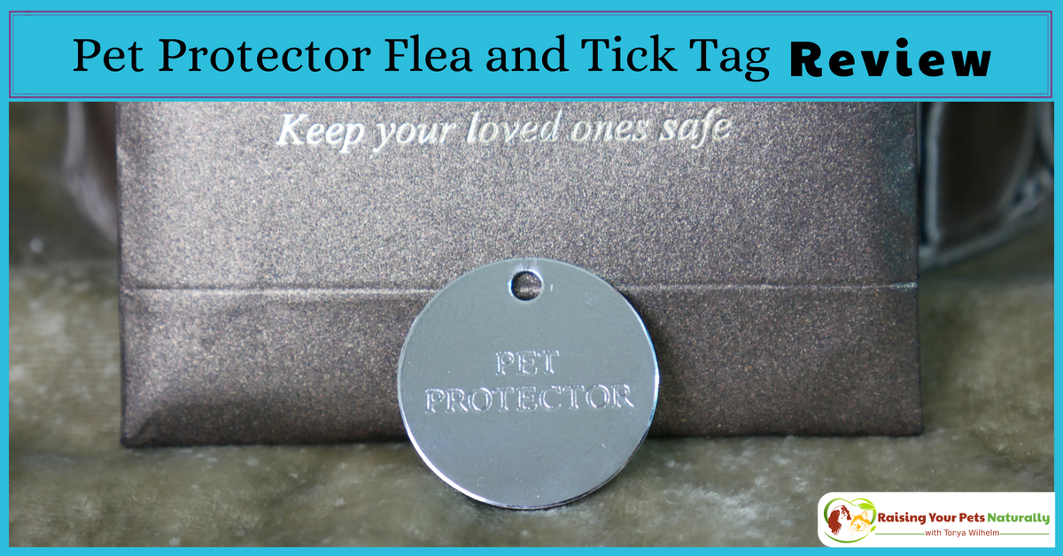 Natural tick and flea repellent. Check out my review of Pet Protector Flea and Tick Tag. #raisingyourpetsnaturally