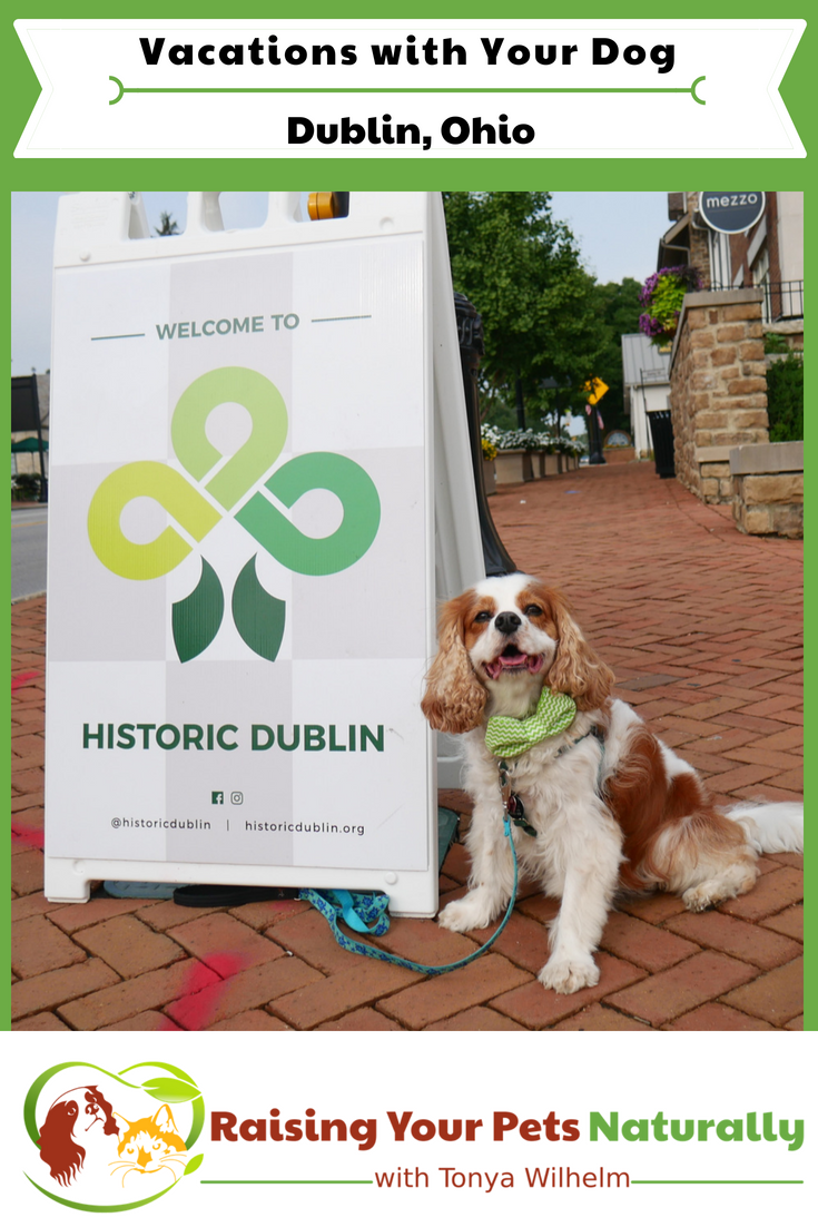 Dog-friendly vacations in the Midwest. Pet-friendly Dublin, Ohio day trip. #raisingyourpetsnaturally #dogfriendlyvacations #travelingwithdogs #dogfriendlydublin #petfriendlyohio #dogfriendlyohio