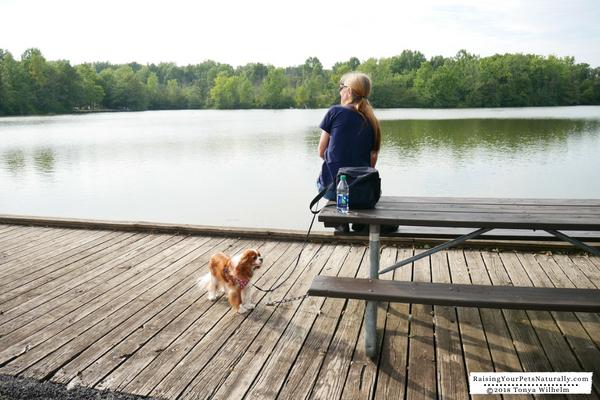 Dog parks in Columbus, Ohio