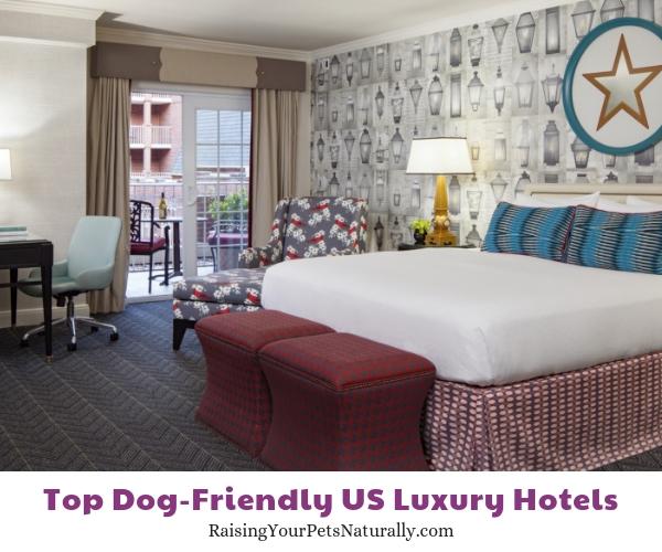 Dog friendly resorts in Virginia