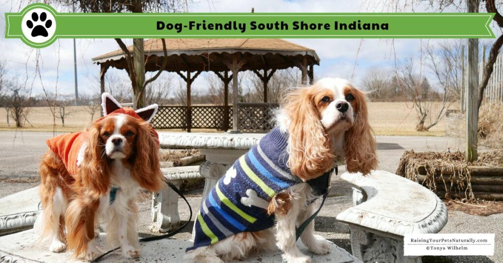 Pet-friendly Indiana