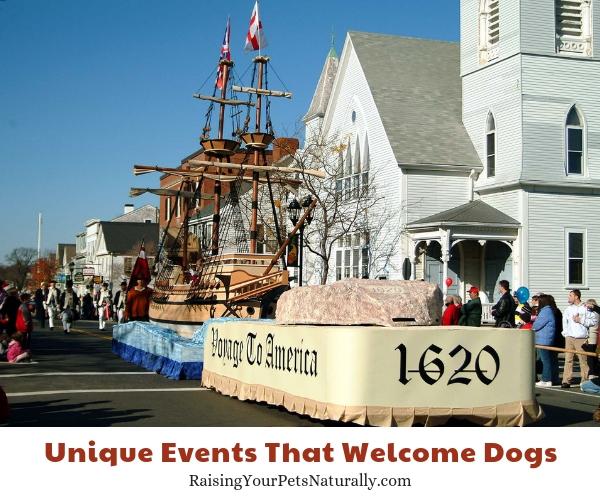 Thanksgiving the America's Hometown Thanksgiving Celebration, Plymouth, Massachusetts dog-friendly
