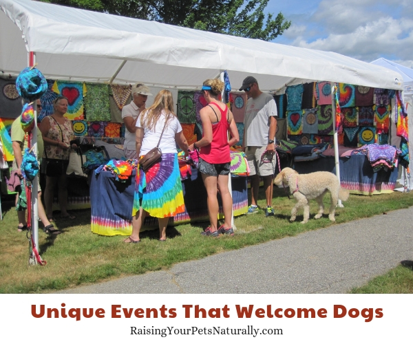 Dog-friendly events in Bethel Maine
