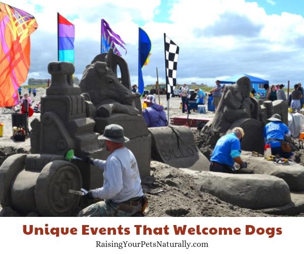 SandSations, Long Beach, Washington dogs allowed