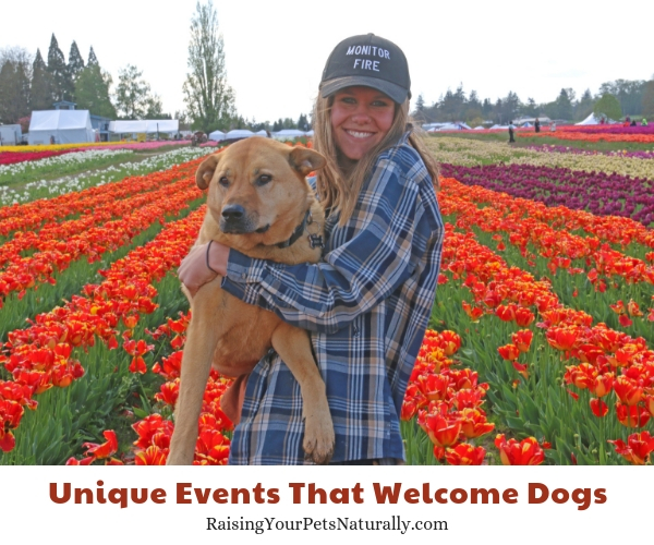 Things to do in Oregon with your dog