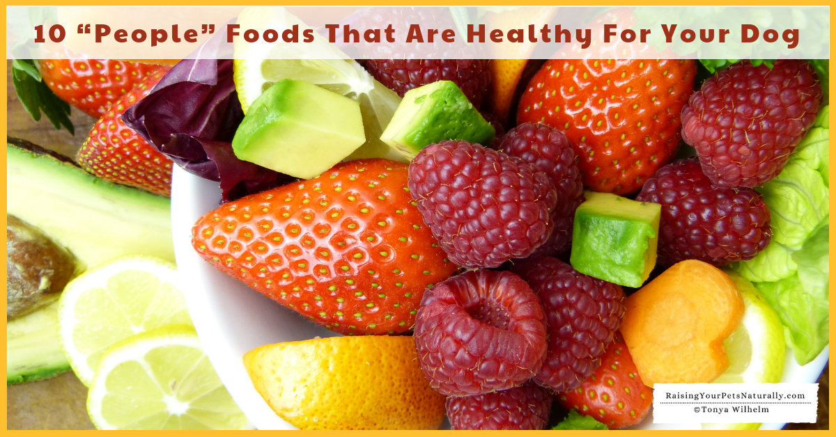 10 foods that are safe and healthy for dogs. #raisingyourpetsnaturally