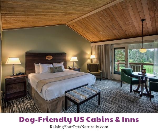 Best dog-friendly resorts in Oregon