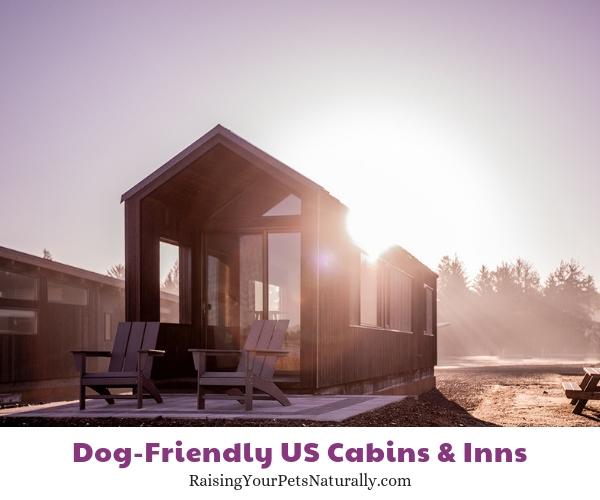Best pet friendly cottages