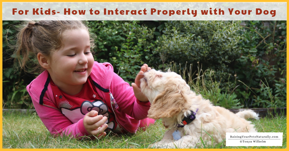 Teaching kids how to interact properly with their dog. #raisingyourpetsnaturally
