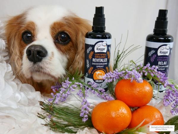 Organic Dog Perfume 4-Legger USDA Certified Organic Dog Deodorizing Spray Review. #raisingyourpetsnaturally