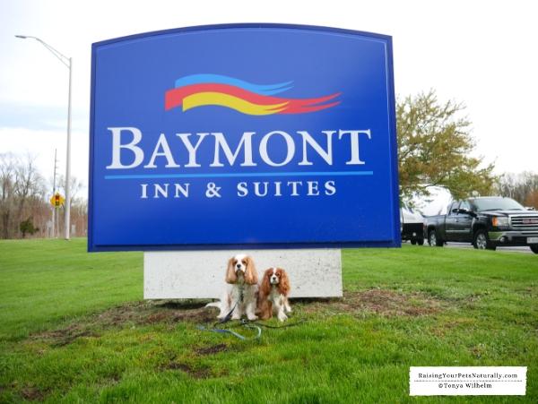 Dog-friendly Indiana Dunes hotels