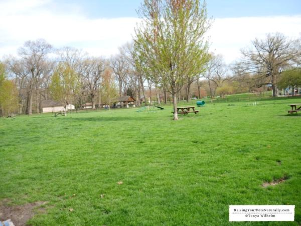 Indiana Dog Park