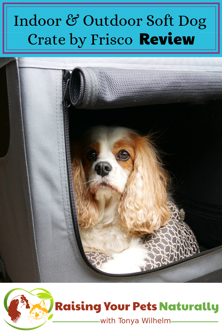 Best Dog Travel Crate Review   Safely Traveling with Pets in a Car