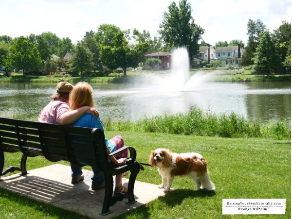 Dog-friendly public gardens