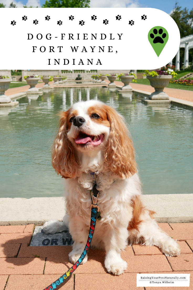 Dog-Friendly Midwest Vacations | Fort Wayne, Indiana Pet Travel Guide