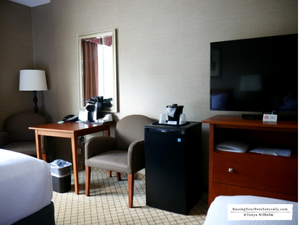 Best hotel chains that allow dogs