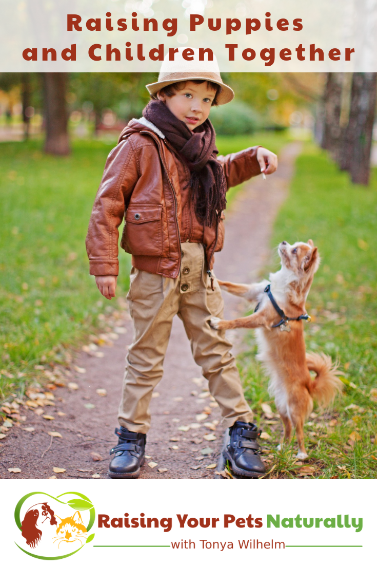Raising Puppies and Children Together | Teaching Kids How to Interact with a Puppy