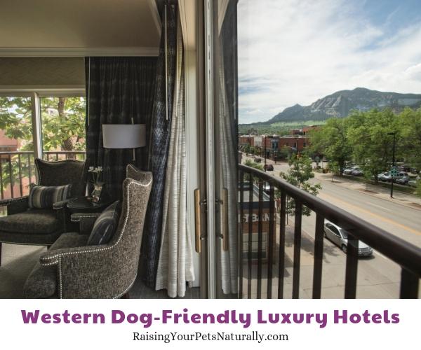 Boulder Colorado dog friendly hotels