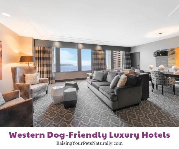 Best Seattle Washington pet friendly hotels