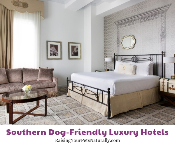 5 star Texas pet friendly hotels