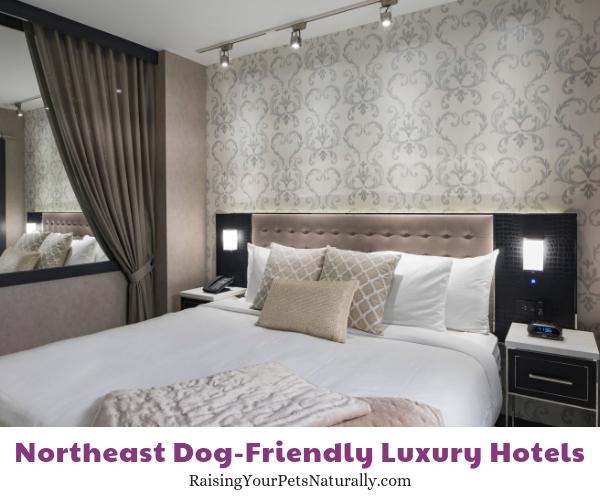 Luxury five star NY hotels