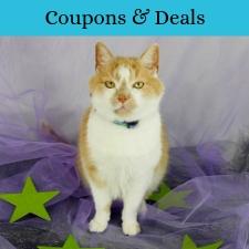 Pet Coupons, Discounts and Deals