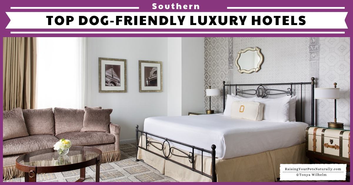 Southern dog-friendly luxury hotels