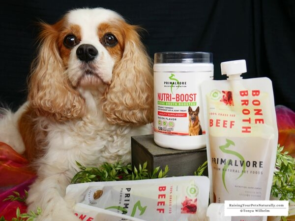 Dog supplements for joint care