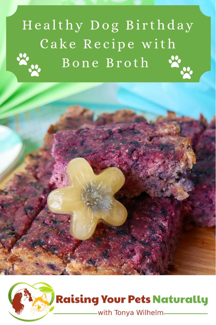 Healthy Dog Birthday Cake Recipe with Bone Broth