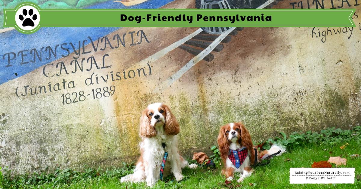Pet-friendly Pennsylvania