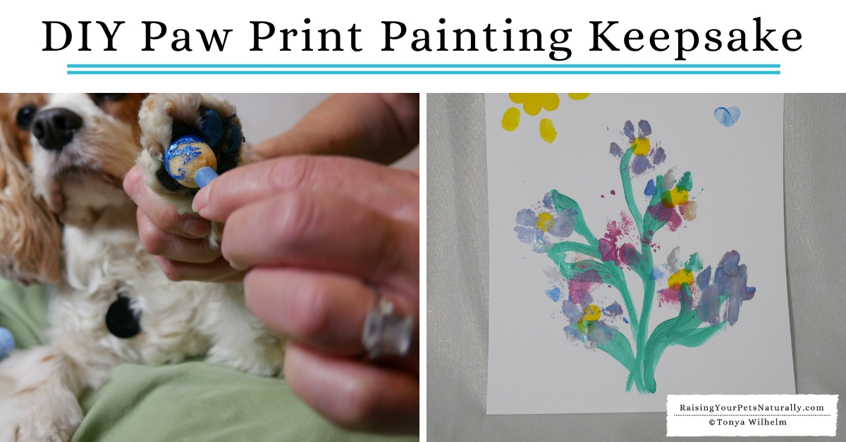 Make your dog's paw out of paint