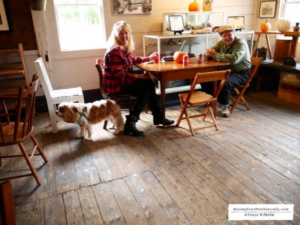 Pet-friendly cafes in Massachusetts