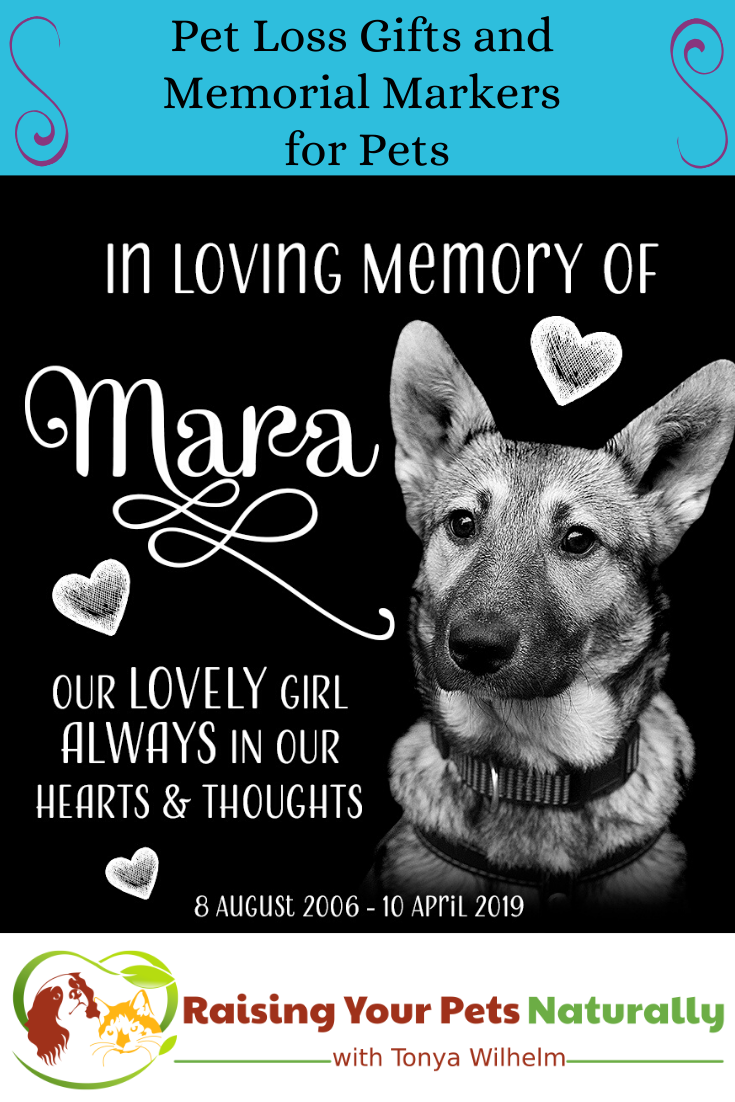 Pet Loss Gifts and Memorial Markers for Pets | Saying Goodbye to Nutter the Cat