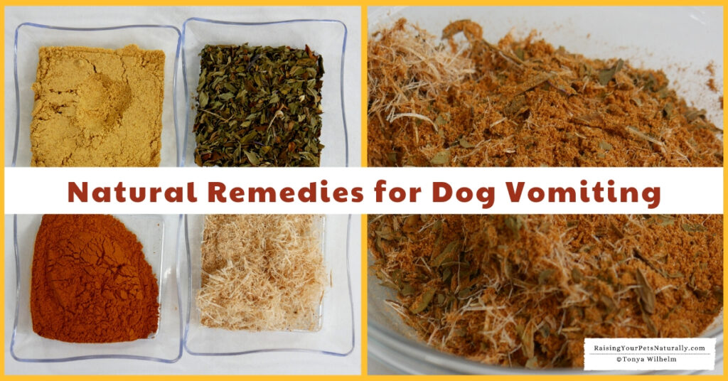 Stop dog from vomiting