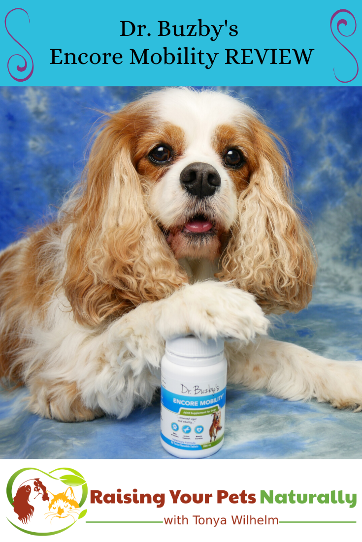 New Zealand Deer Velvet & Green-Lipped Mussel Supplements for Dogs   Dr. Buzby\'s Encore Mobility Review