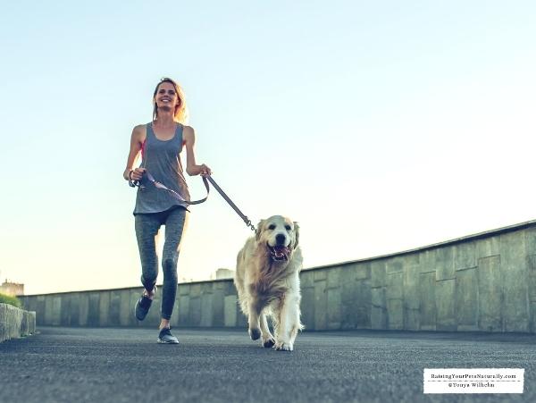 Doe exercise help behavior