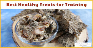 Best Healthy Treats for Puppy Training and Dog Training (Early access for our Patreon community)