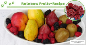 Feed Your Dog the Rainbow of Healthy Fruits | DIY Raw Food Topper (Early access for our Patreon community)