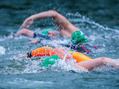 use fins to become faster in the water.