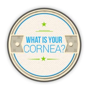 What is Your Cornea