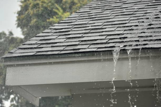 Roof Leaks Pioneer Roofing San Diego