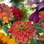 Bouquet2