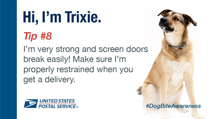 National Dog Bite Awareness