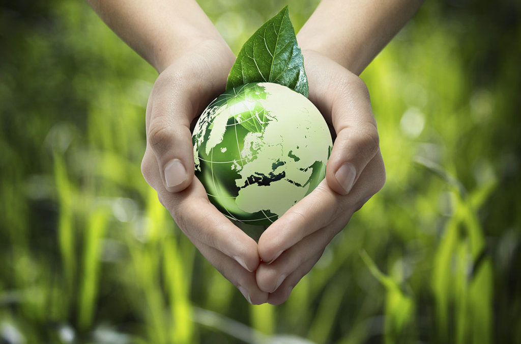 AGP | Our Commitment to the Environment