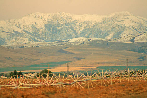 First snow on mountain ranges with patatoes field at foreground.