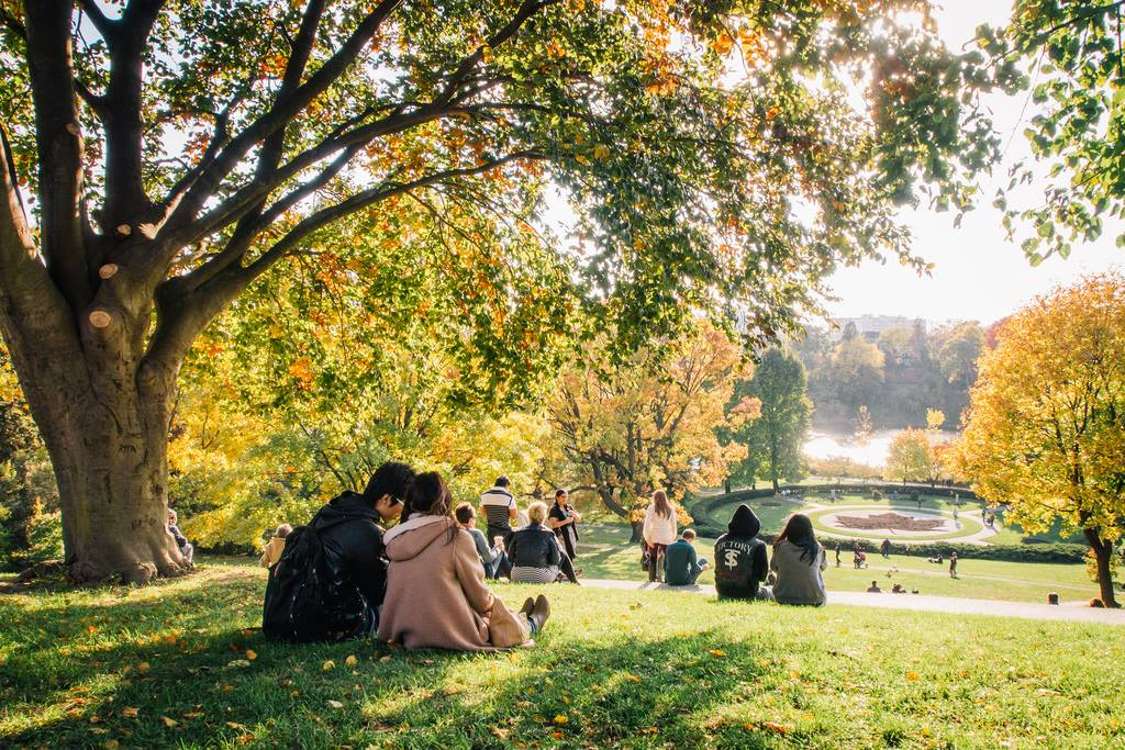 Groups of people sitting on a hill in High Park, Toronto in the fall time