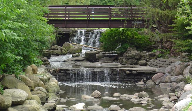 Edward Gardens bridge and waterfall