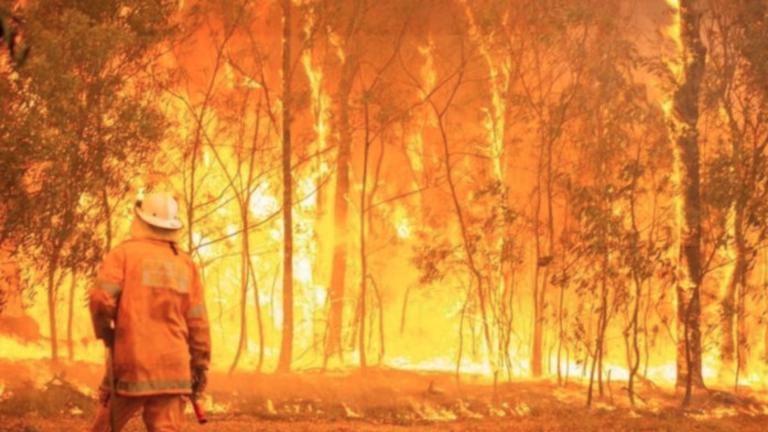 Australia burns - image shows a lone Australian Fire Fighter in front of a raging bushfire