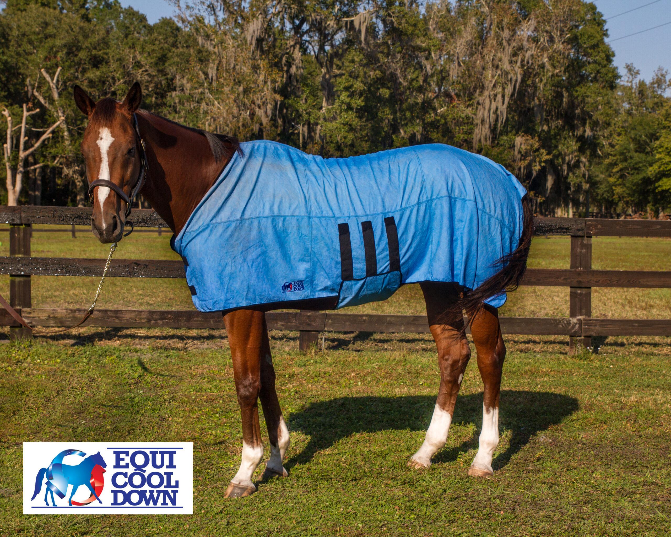 Equine Deluxe Body Wrap